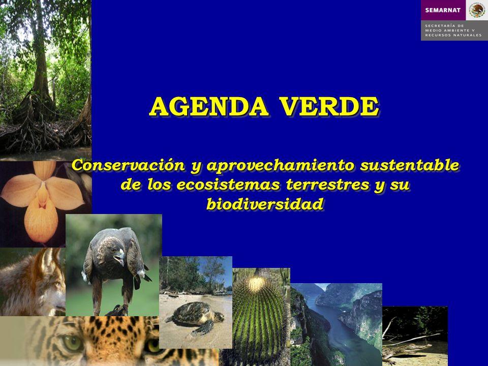 AGENDA VERDE Conservación y aprovechamiento sustentable de los ecosistemas terrestres y su biodiversidad.