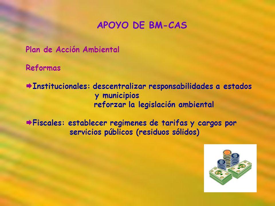 APOYO DE BM-CAS Plan de Acción Ambiental Reformas