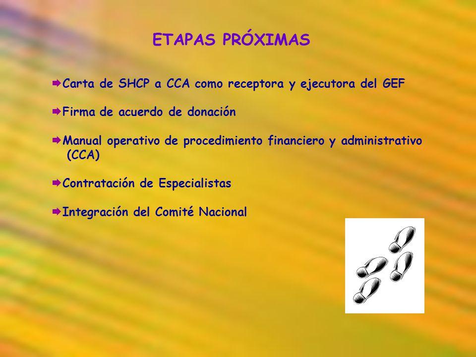 ETAPAS PRÓXIMAS Carta de SHCP a CCA como receptora y ejecutora del GEF