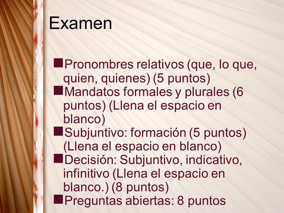Examen Pronombres relativos (que, lo que, quien, quienes) (5 puntos)