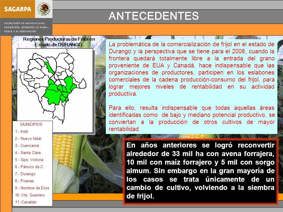 Regiones Productoras de Frijol en Estado de DURANGO.
