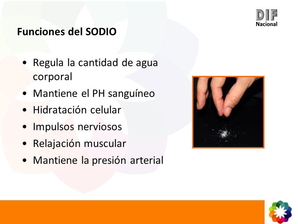 Funciones del SODIO Regula la cantidad de agua corporal. Mantiene el PH sanguíneo. Hidratación celular.