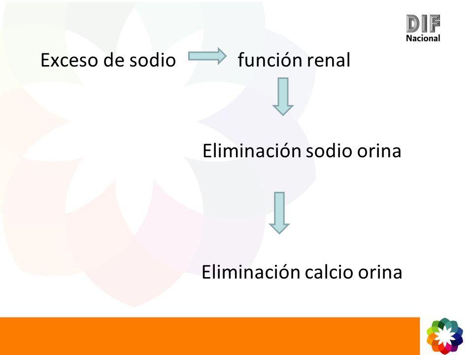 Exceso de sodio función renal