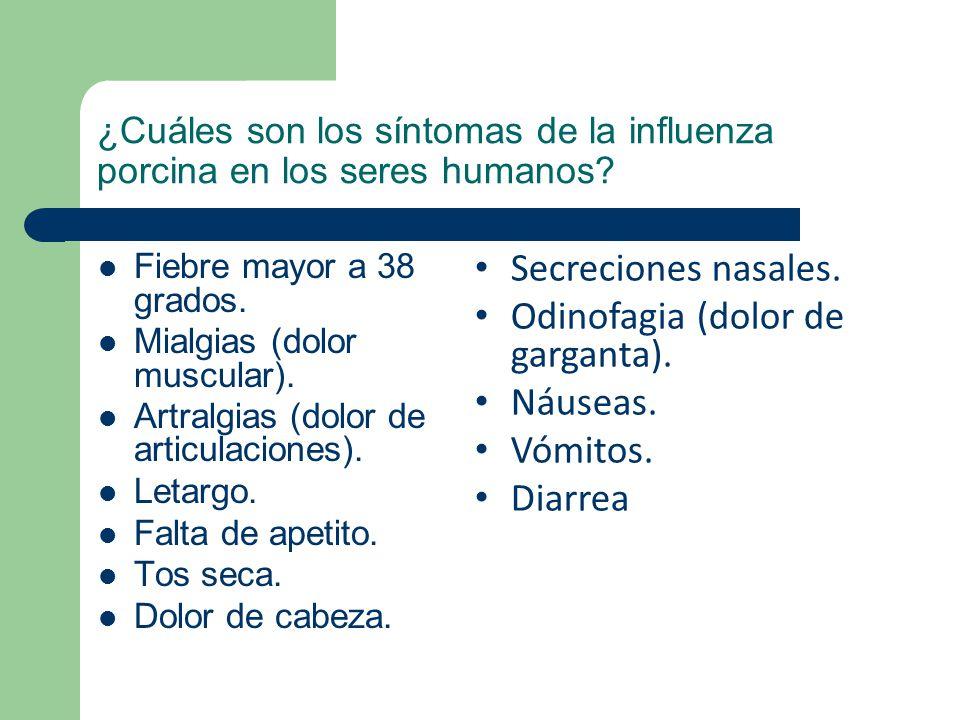 ¿Cuáles son los síntomas de la influenza porcina en los seres humanos