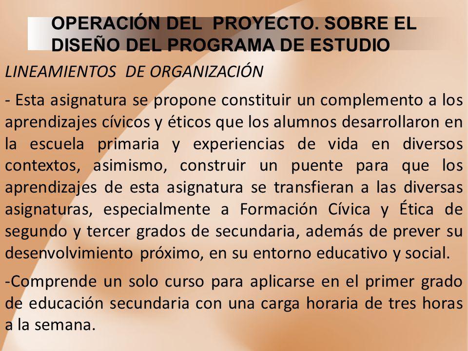 OPERACIÓN DEL PROYECTO. SOBRE EL DISEÑO DEL PROGRAMA DE ESTUDIO