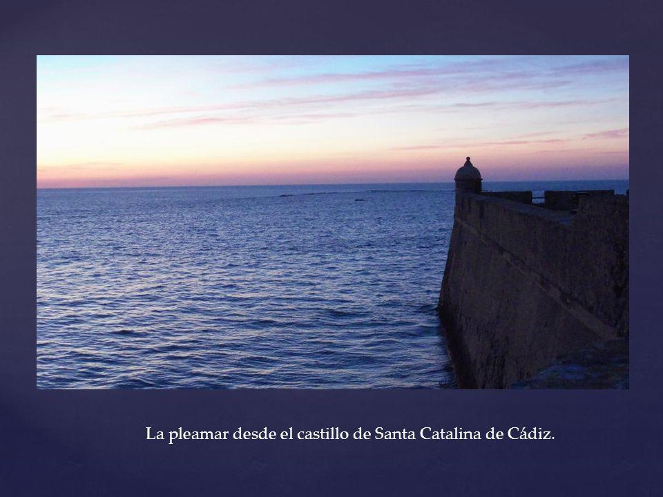 La pleamar desde el castillo de Santa Catalina de Cádiz.