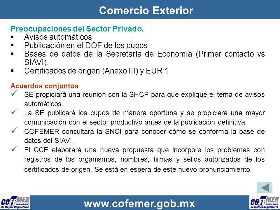 Comercio Exterior Preocupaciones del Sector Privado.