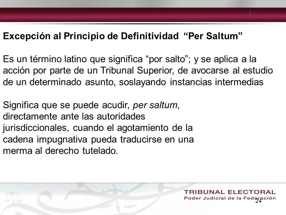 Excepción al Principio de Definitividad Per Saltum