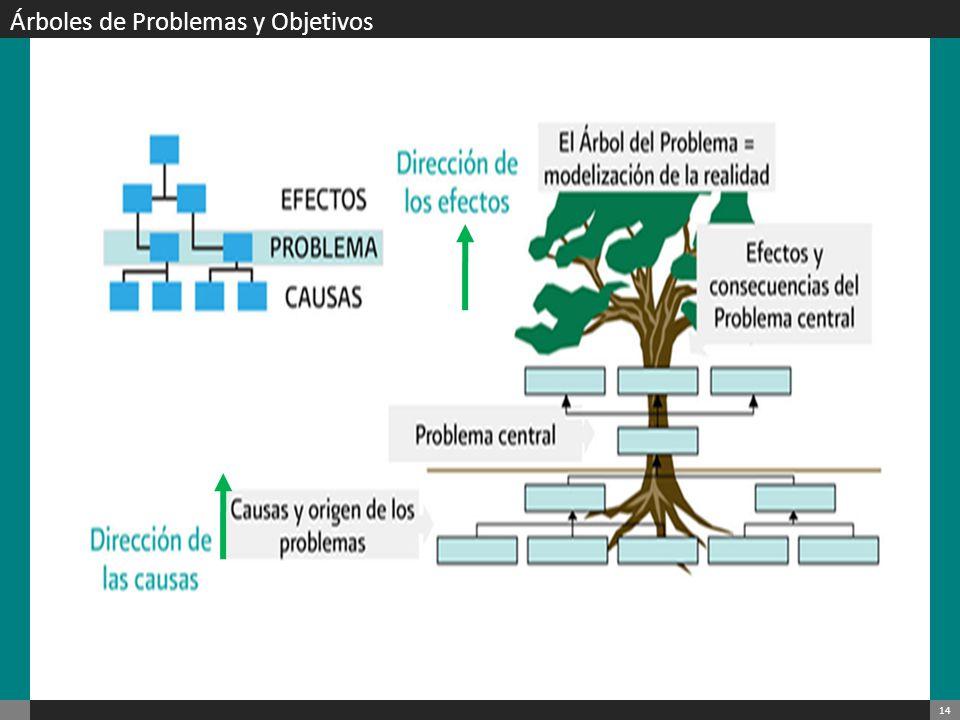 Árboles de Problemas y Objetivos