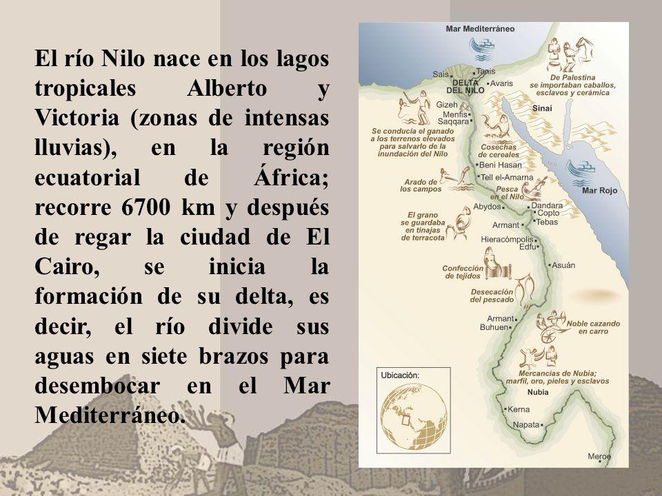 El río Nilo nace en los lagos tropicales Alberto y Victoria (zonas de intensas lluvias), en la región ecuatorial de África; recorre 6700 km y después de regar la ciudad de El Cairo, se inicia la formación de su delta, es decir, el río divide sus aguas en siete brazos para desembocar en el Mar Mediterráneo.
