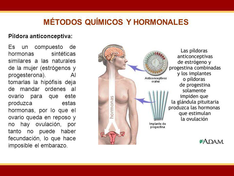 MÉTODOS QUÍMICOS Y HORMONALES