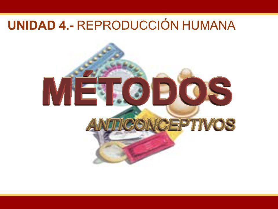 UNIDAD 4.- REPRODUCCIÓN HUMANA