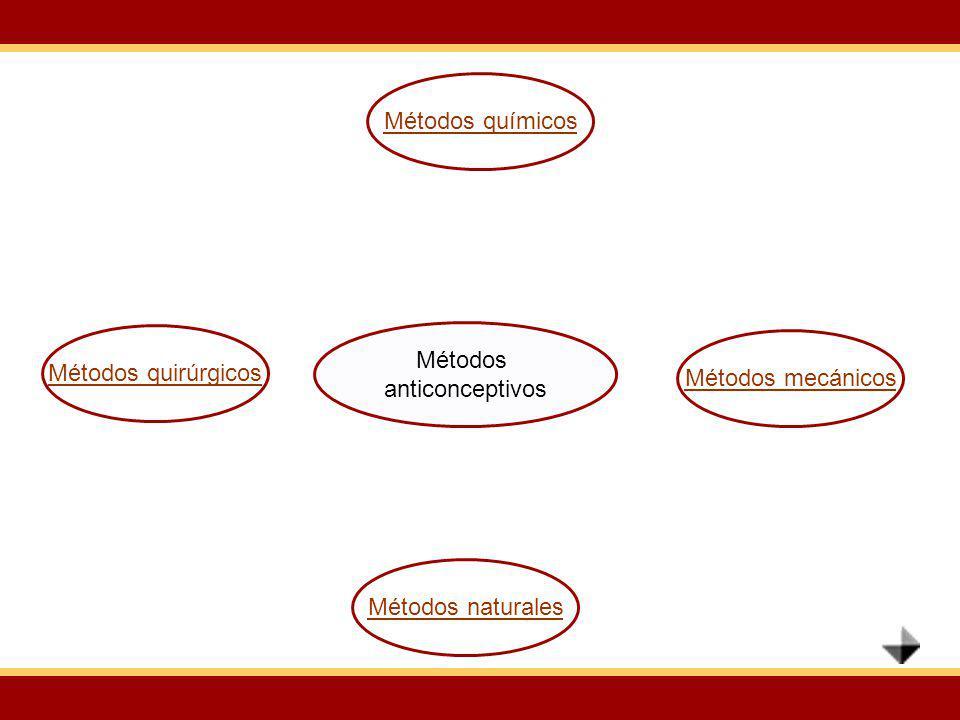 Métodos químicos Métodos quirúrgicos Métodos anticonceptivos Métodos mecánicos Métodos naturales