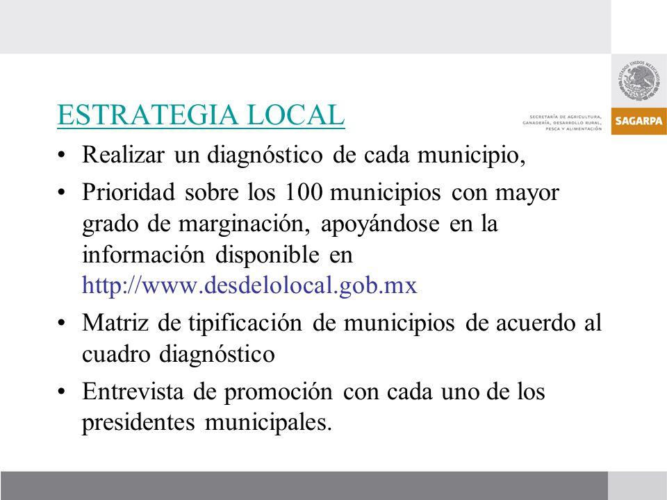 ESTRATEGIA LOCAL Realizar un diagnóstico de cada municipio,
