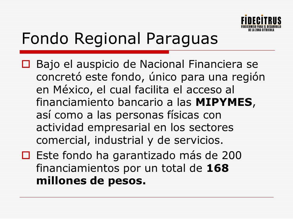 Fondo Regional Paraguas