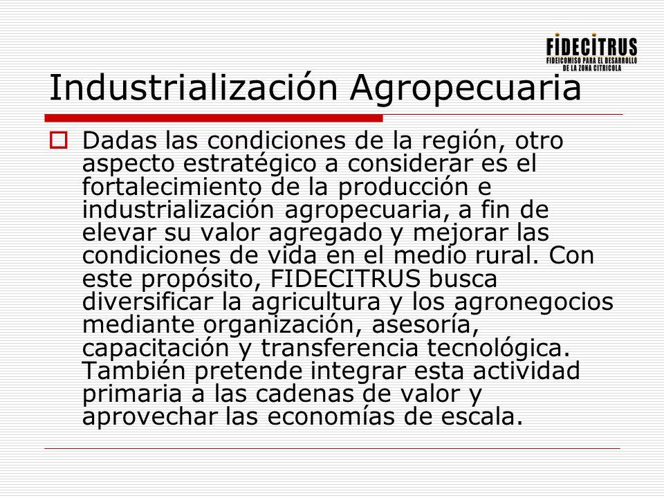 Industrialización Agropecuaria