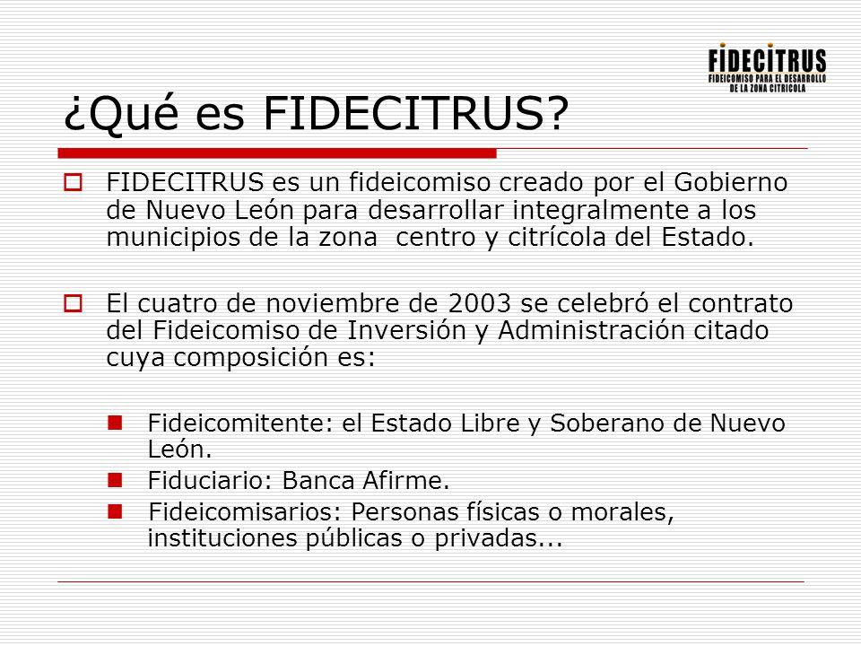 ¿Qué es FIDECITRUS