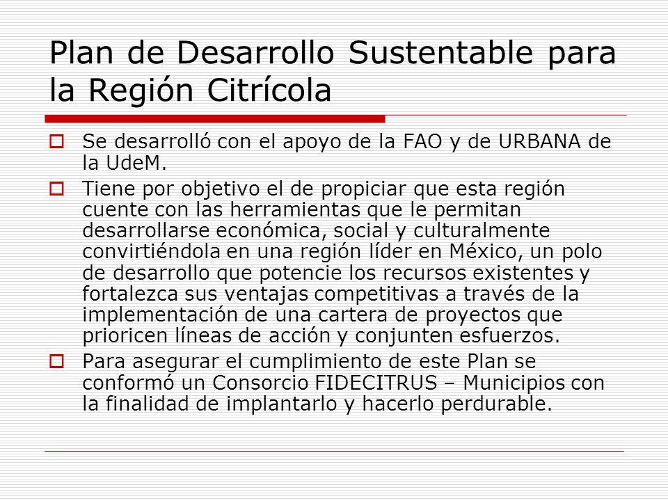 Plan de Desarrollo Sustentable para la Región Citrícola