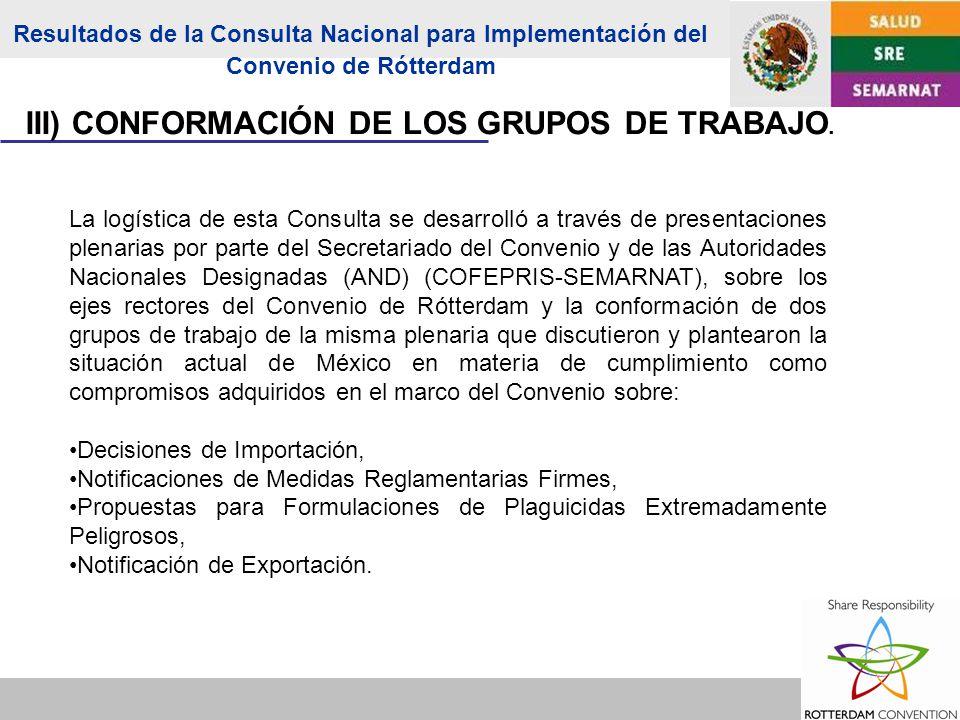 III) CONFORMACIÓN DE LOS GRUPOS DE TRABAJO.
