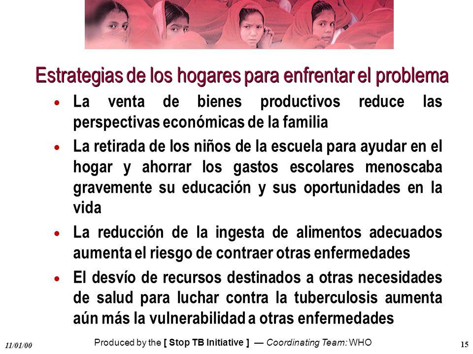 Estrategias de los hogares para enfrentar el problema