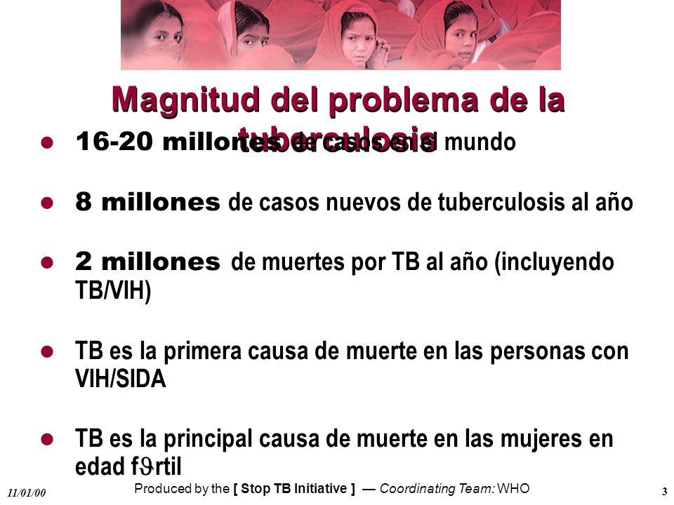 Magnitud del problema de la tuberculosis