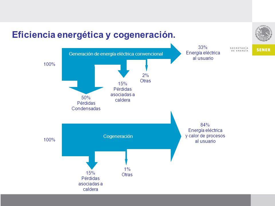 Eficiencia energética y cogeneración.