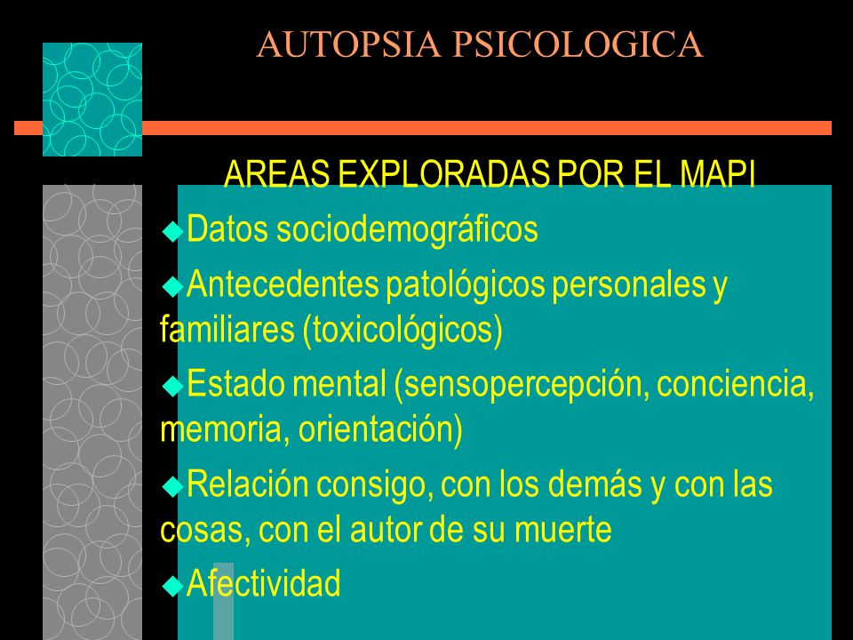 AREAS EXPLORADAS POR EL MAPI