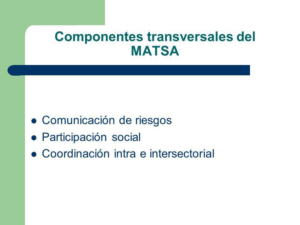Componentes transversales del MATSA
