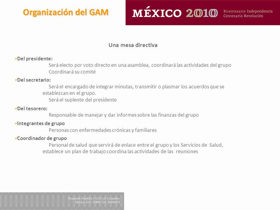 Organización del GAM Una mesa directiva Del presidente: