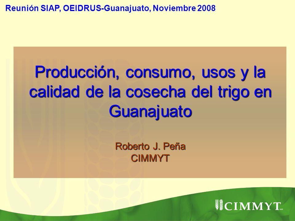 Reunión SIAP, OEIDRUS-Guanajuato, Noviembre 2008