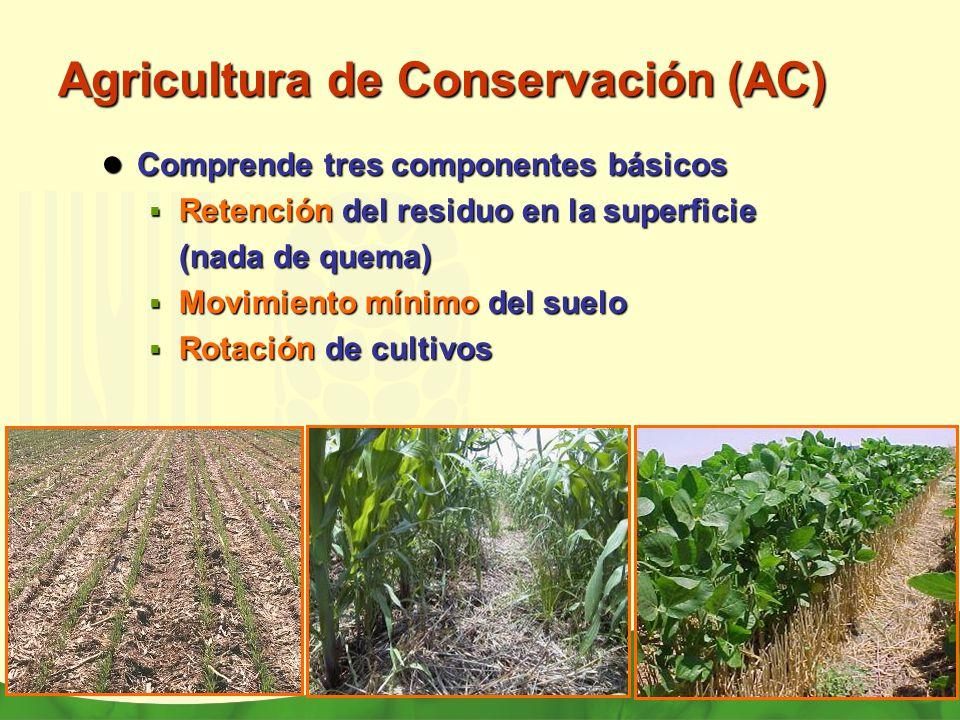 Agricultura de Conservación (AC)
