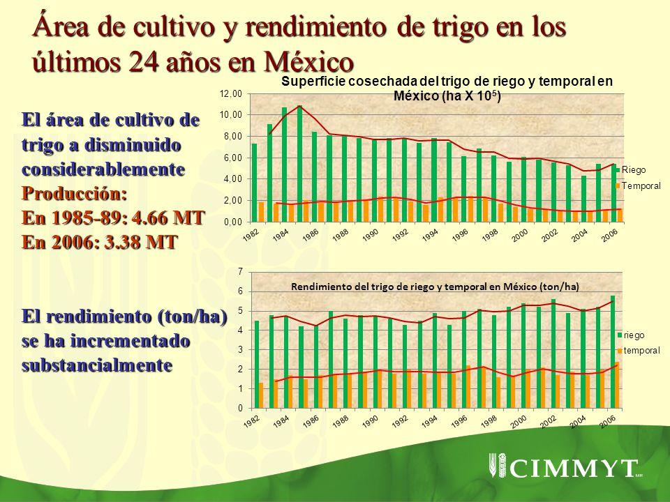 Rendimiento del trigo de riego y temporal en México (ton/ha)