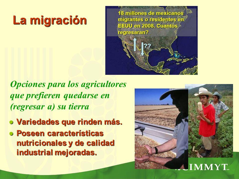 18 millones de mexicanos migrantes o residentes en EEUU en 2008