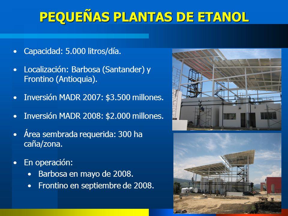 PEQUEÑAS PLANTAS DE ETANOL