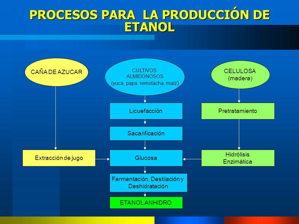 PROCESOS PARA LA PRODUCCIÓN DE ETANOL