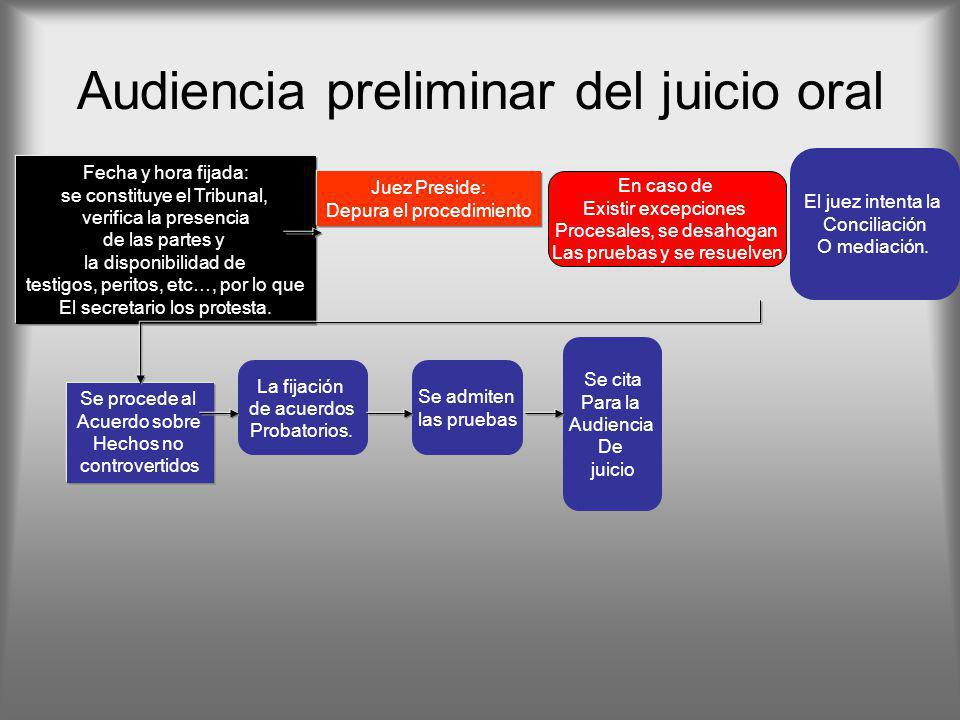 Audiencia preliminar del juicio oral
