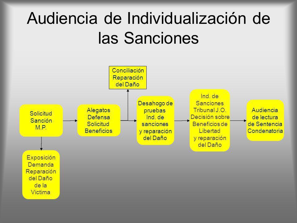 Audiencia de Individualización de las Sanciones