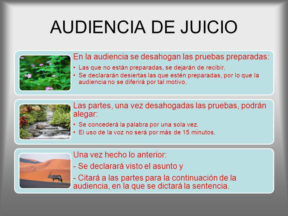 AUDIENCIA DE JUICIO En la audiencia se desahogan las pruebas preparadas: Las que no están preparadas, se dejarán de recibir.