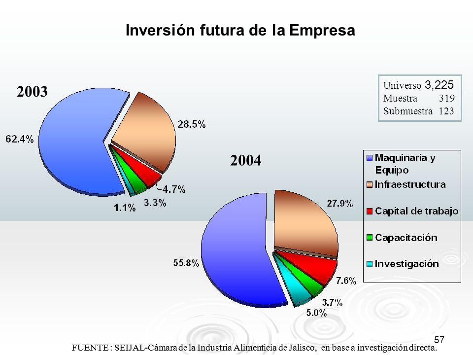 Inversión futura de la Empresa