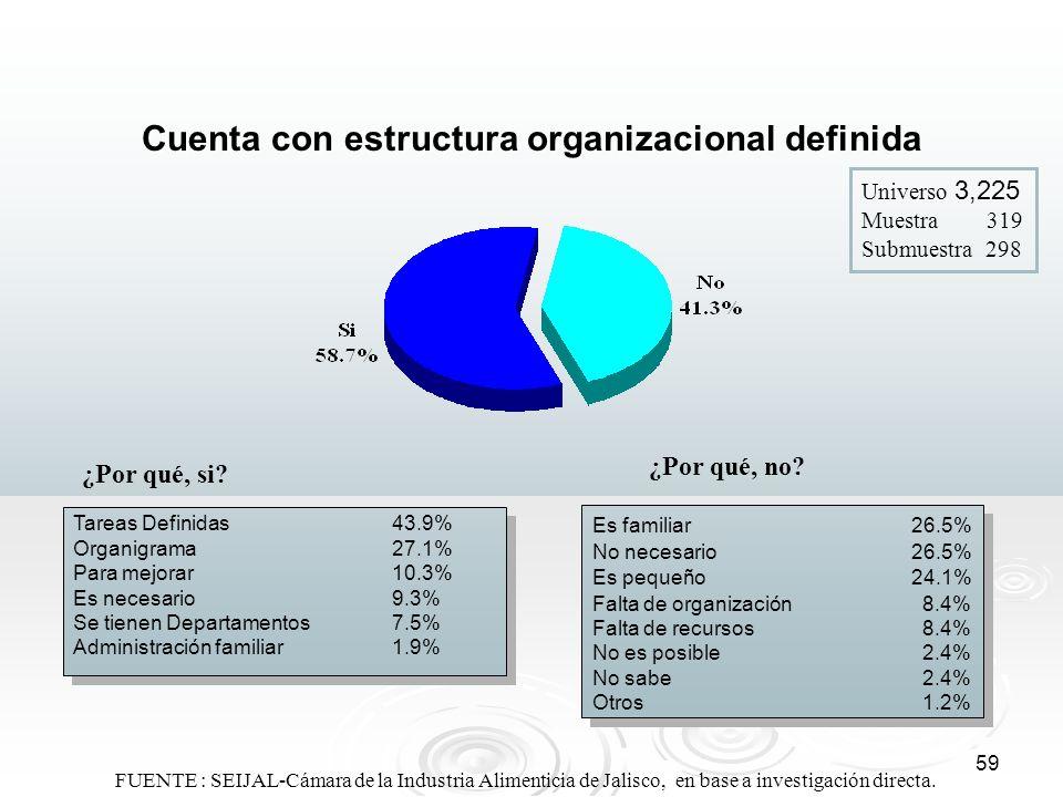 Cuenta con estructura organizacional definida