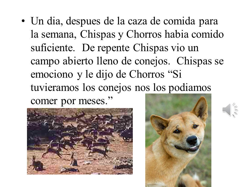 Un dia, despues de la caza de comida para la semana, Chispas y Chorros habia comido suficiente.