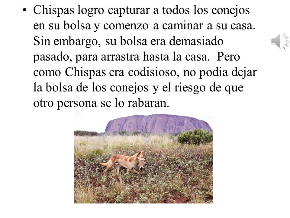 Chispas logro capturar a todos los conejos en su bolsa y comenzo a caminar a su casa.