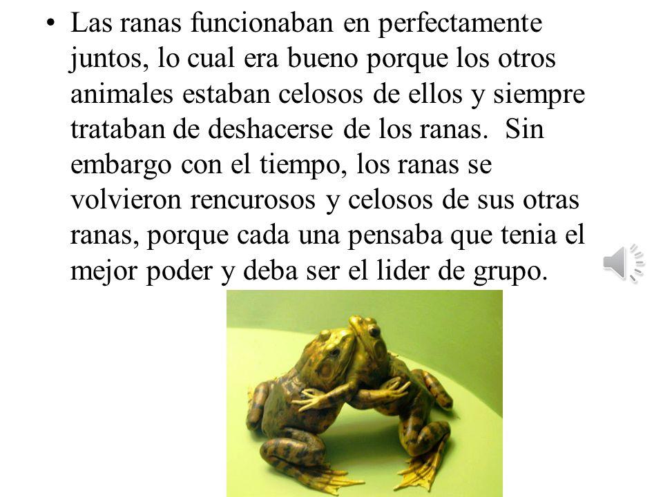 Las ranas funcionaban en perfectamente juntos, lo cual era bueno porque los otros animales estaban celosos de ellos y siempre trataban de deshacerse de los ranas.
