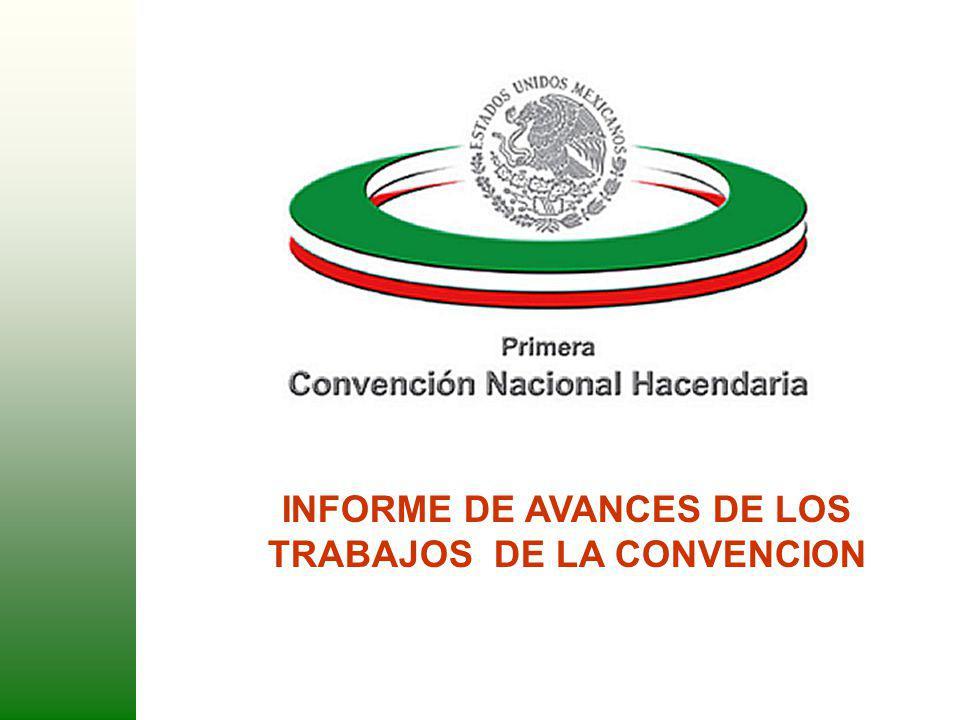 INFORME DE AVANCES DE LOS TRABAJOS DE LA CONVENCION