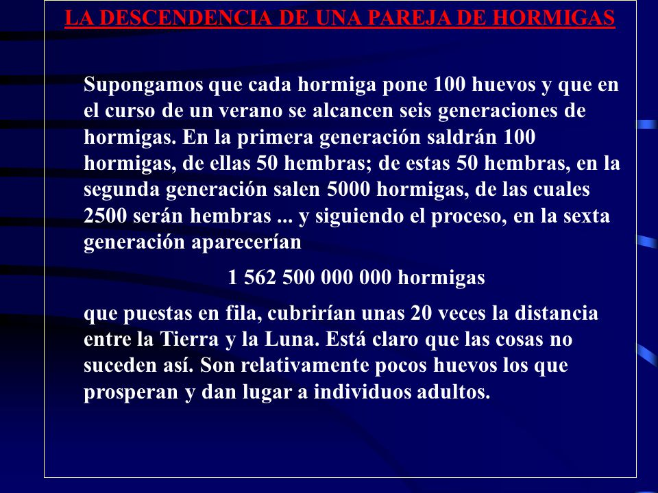 LA DESCENDENCIA DE UNA PAREJA DE HORMIGAS
