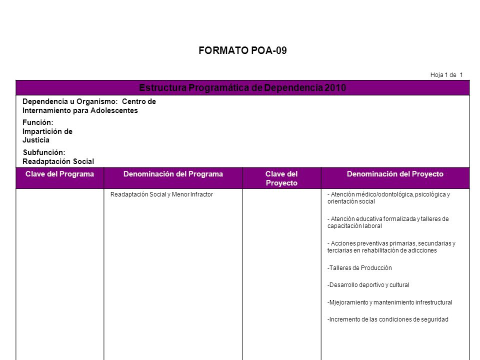 FORMATO POA-09 Estructura Programática de Dependencia 2010