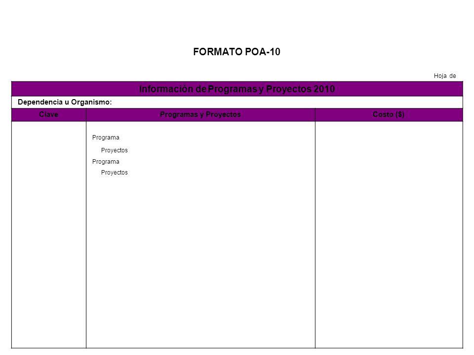 Información de Programas y Proyectos 2010