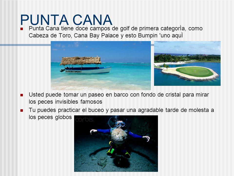 PUNTA CANAPunta Cana tiene doce campos de golf de primera categorÌa, como Cabeza de Toro, Cana Bay Palace y esto Bumpin uno aquÌ.