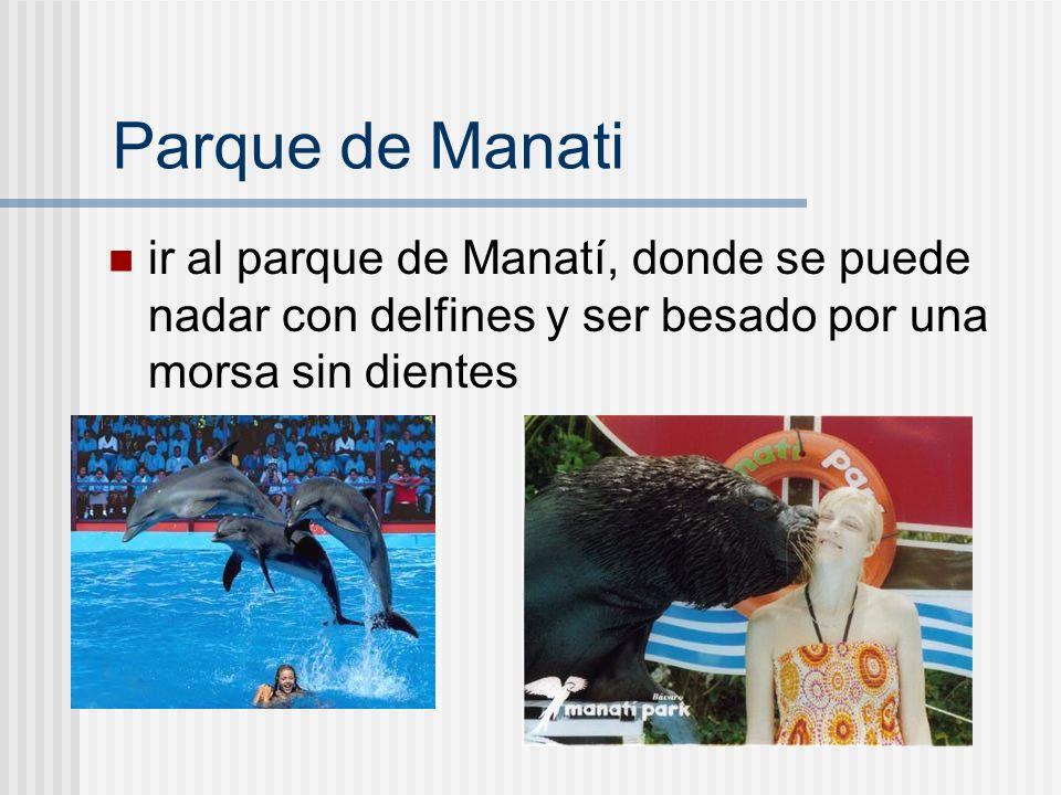 Parque de Manatiir al parque de Manatí, donde se puede nadar con delfines y ser besado por una morsa sin dientes.