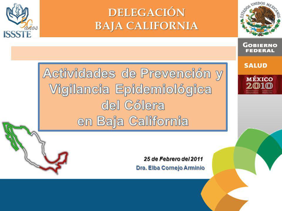 Actividades de Prevención y Vigilancia Epidemiológica